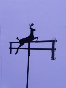 deer-rain-gauge3